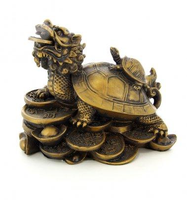 Tartaruga con Testa di Drago