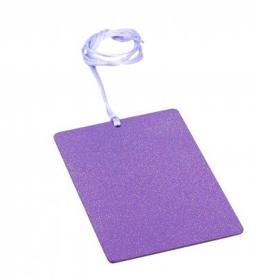Piastra di Tesla Purpurea Rettangolare Card