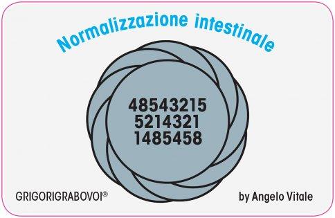Tessera Radionica 24 - Normalizzazione Intestinale