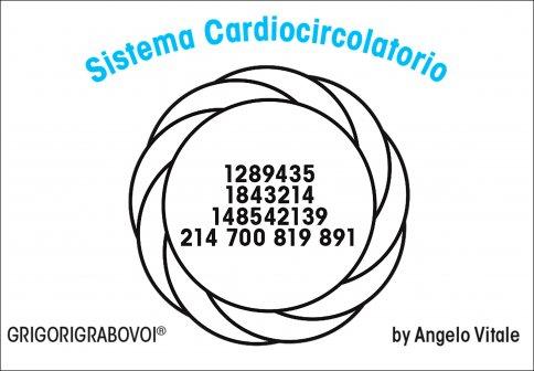 Tessera Radionica 35 - Sistema Cardiovascolare