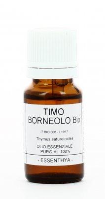 Timo Borneolo - Olio Essenziale Puro