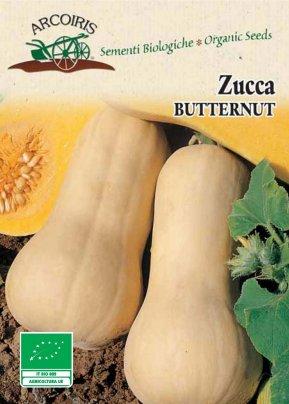 Semi di Zucca Butternut - 4 Gr.