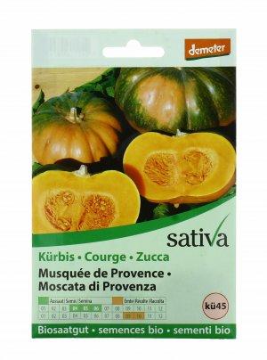 Zucca Moscata di Provenza - Ku45