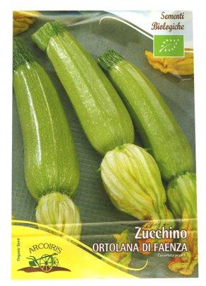 Semi di Zucchino Ortolana di Faenza - 25 Gr