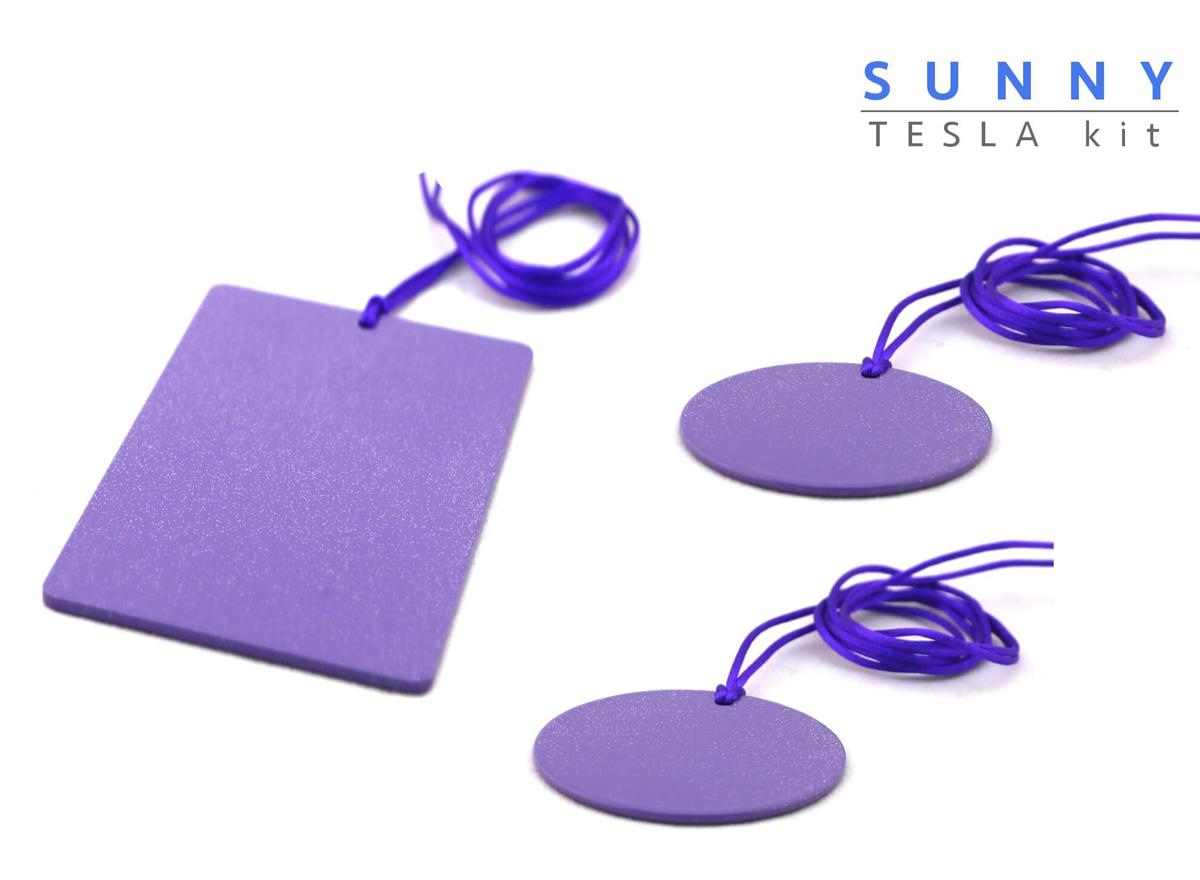 Piastre Di Tesla Funzionano sunny piastre di tesla purpuree - kit amicizia