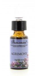 Agrimony - Agrimonia