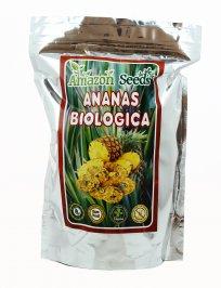 Ananas Essiccato a Fette Bio