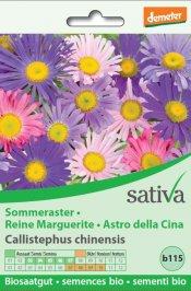 Astro Della Cina - b115