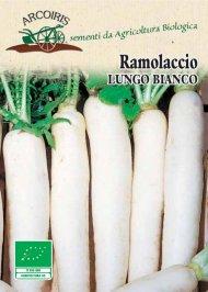 Semi di Ramolaccio Lungo Bianco - 5 Gr