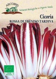 Semi di Cicoria Rossa di Treviso Tardiva 3 g.