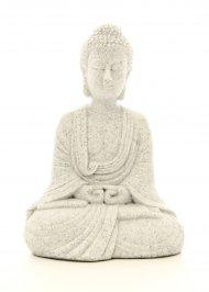 Buddha in Meditazione