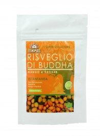 Omaggio Mango e Baobab - Risveglio di Buddha