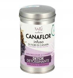 Infuso Detox Detossinante - Canaflor
