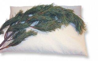 Cuscino di Farro con Cembro 40X60