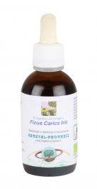 Ficus Carica - Fico Bio - Estratto Idrogliceroalcolico