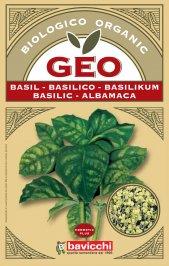 Germogli di Basilico