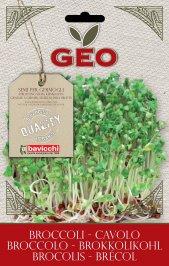 Germogli di Cavolo Broccolo