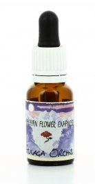 Essenza Gulaga Orchid - Himalayan Flower Enhancers