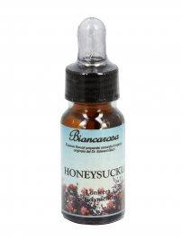 Honeysuckle - Caprifoglio