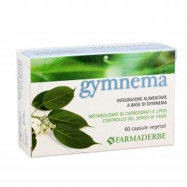 Gymnema - 60 Capsule