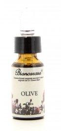 Olive - Olivo