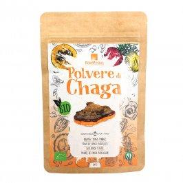 Polvere di Chaga Bio
