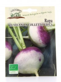 Semi di Rapa di Milano a Colletto Viola - 8 Gr