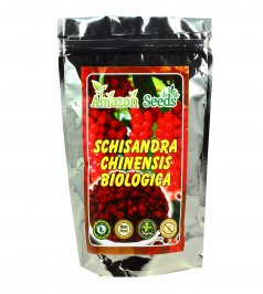 Bacche di Schisandra Chinensis Biologica