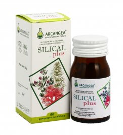 Silical - Integratore
