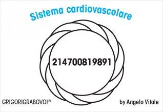 Tessera Radionica - Sistema Cardiovascolare