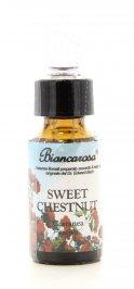 Sweet Chestnut - Castagno Dolce