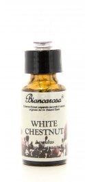 White Chestnut - Castagno Bianco