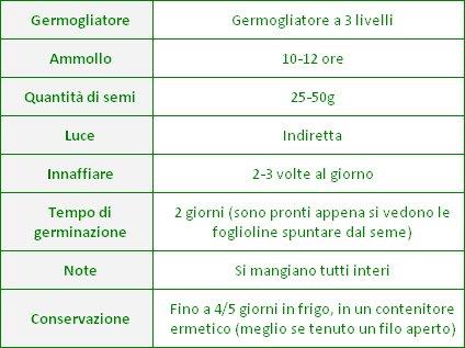 Semi per Germogli - Lenticchie