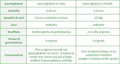 Cavolo Rosso Brassica oleracea gongylode