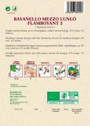 Ravanello Flamboyant