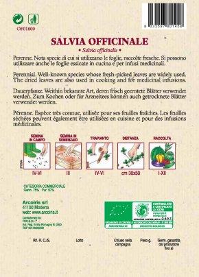 Salvia Officinale
