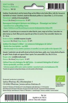 Crisantemi Commestibili - b123