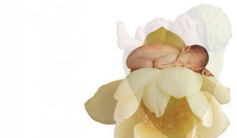 Anne Geddes - Linea Bimbo - Olio Massaggio Coccole