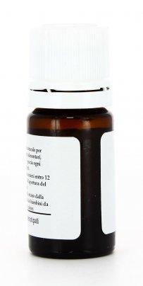 Cipresso Bio - Olio Essenziale Puro