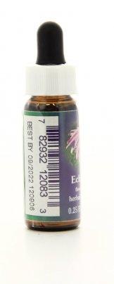 Echinacea - Essenze Californiane