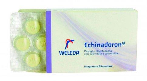 Echinadoron