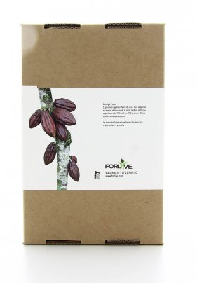 Fave di Cacao Bio