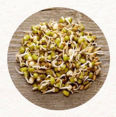 Germogli in Bustina Bio Mix1 - Cereali, Legumi e Semi