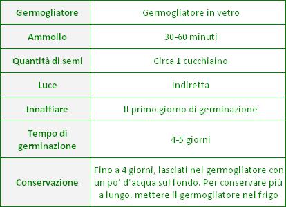 Semi per Germogli - Crescione Lapidium sativum