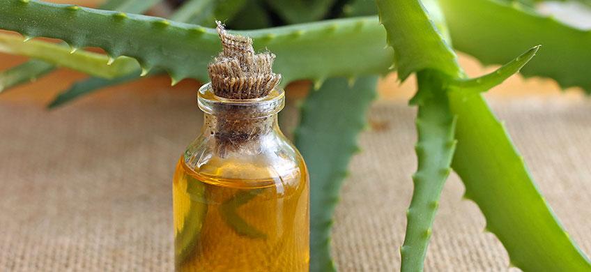 Olio di Aloe