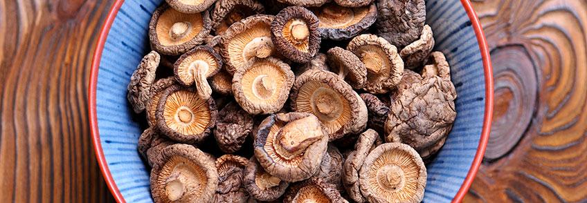 Funghi Shiitake Disidratati Bio