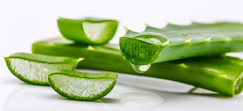 Succo Puro di Aloe Vera