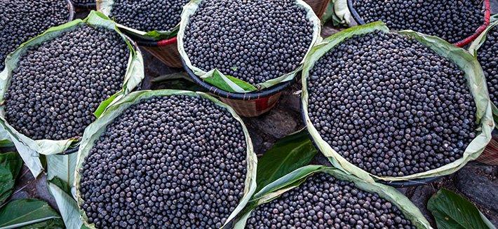 Le bacche di acai sono un superfood ricco di proprietà per la bellezza e la salute