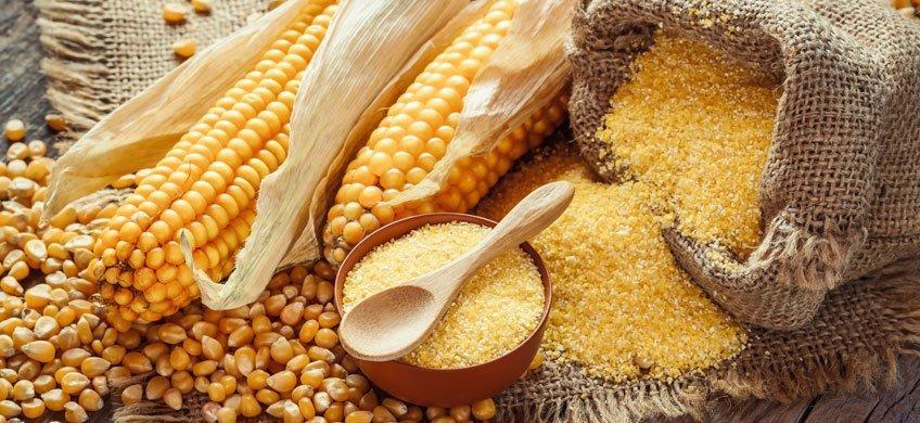 Le proprietà del mais: il cereale più coltivato al mondo