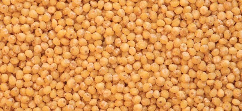 Le preziose proprietà del miglio: un cereale sottovalutato
